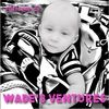 wadesventure